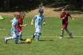 2017-05-28 Funino_Liga 057